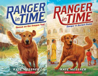 Ranger in Time Book Series