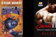Prince of Sunset Book Series